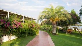 Arbeiten Sie mit Palmen und Blumen, Ansicht im Garten Lizenzfreie Stockfotografie