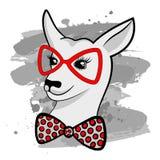 Arbeiten Sie Porträt des Hippie-Kängurus mit roten Gläsern um und beugen Sie Stockfotos