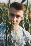 Arbeiten Sie Porträt eines Jungen in einem Getreidefeld um Stockbilder