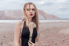 Arbeiten Sie Schuss des schwarzen Badeanzugs des schönen sexy blonden Mädchens mit einem hellen Make-up auf einem Hintergrund von Lizenzfreies Stockfoto
