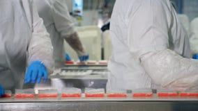 Arbeiter sammelt Nahrung von einem Förderer in einer Anlage stock footage