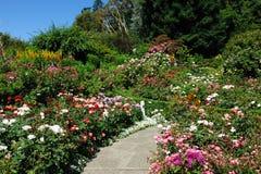 Arbeitet Pfad im Garten Lizenzfreie Stockbilder