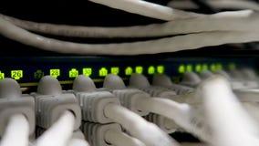 Arbeits-Ethernet-Server Steckfassungen RJ45, die LED-Lichter blinken Abschluss oben stock footage