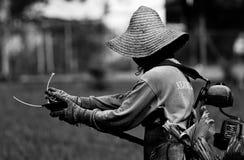Arbeitsbild des Mannes benutzt einen Schnurmäher, um Gras zu schneiden stockfotografie