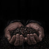 Arbeitskräfte übergeben mit Kaffeebohne Stockbild