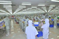 Arbeitskräfte arbeiten in einer Verarbeitungsanlage der Meeresfrüchte in Tien Giang, eine Provinz im der Mekong-Delta von Vietnam Lizenzfreie Stockfotografie