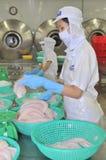 Arbeitskräfte beinen pangasius Fische in einer Verarbeitungsanlage der Meeresfrüchte in Tien Giang, eine Provinz im der Mekong-De Stockbild