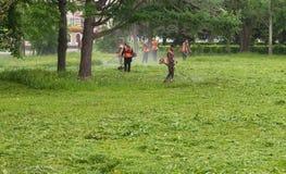 Arbeitskräfte gemähtes Gras Stockbilder