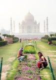 Arbeitskräfte im Garten von Taj Mahal stockbild