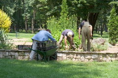 Arbeitskräfte im Park stockfoto