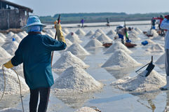 Arbeitskräfte im Salz, das Thailand bewirtschaftet Lizenzfreie Stockbilder
