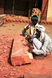 Arbeitskräfte in landwirtschaftlichem Indien Lizenzfreie Stockfotos