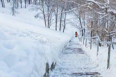 Arbeitskräfte säubern Schnee auf der Treppe im Park Stockfoto
