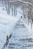 Arbeitskräfte säubern Schnee auf der Treppe im Park Lizenzfreies Stockbild