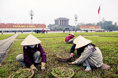 Arbeitskräfte in Vietnam Stockfotografie