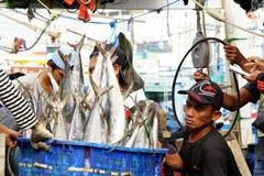 Arbeitskräfte wiegen Fische am Fischauktionsmarkt lizenzfreie stockfotos