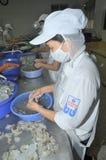 Arbeitskräfte ziehen frischen rohen Garnelen in einer Meeresfrüchtefabrik in Stadt Quy Nhon, Vietnam ab Stockfotografie