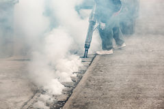 Arbeitskraft, die Insektenvertilgungsmittel einnebelt, um Aedesmoskito zu töten Stockbild