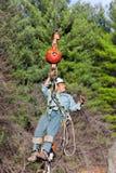 Arbeitskraft, die oben in einen Baum hochgezogen wird Stockbilder