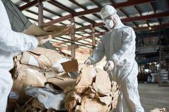 Arbeitskraft im Schutzanzug, der Pappe an der Fabrik sortiert stockfoto