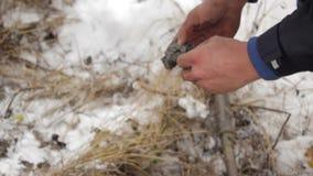 Arbeitskraft produziert die Geologie des Bodens Schließen Sie herauf Hände stock video