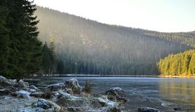 Arber lake. At the German National Park Stock Photography