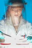 Arbeta i laboratoriumet Royaltyfria Foton
