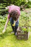 Arbeta i trädgården Arkivfoto