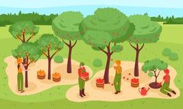 Arbeta i trädgården den isometriska illustrationen Arkivfoto