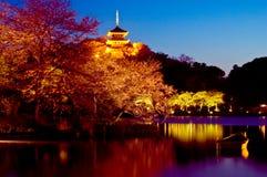 arbeta i trädgården det japanska nightscapetempelet Arkivfoto