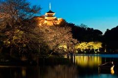 arbeta i trädgården det japanska nightscapetempelet Arkivfoton
