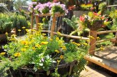 Arbeta i trädgården för blomkruka Arkivbild