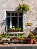 Arbeta i trädgården för fönster Arkivfoton