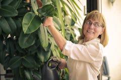 Arbeta i trädgården för kvinna royaltyfria foton