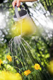 Arbeta i trädgården för sommar Arkivbild