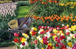 arbeta i trädgården fjäder för kula Fotografering för Bildbyråer