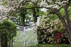 arbeta i trädgården fjädern Royaltyfri Bild