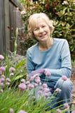 arbeta i trädgården glädje royaltyfria bilder