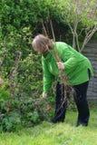 arbeta i trädgården grön lady Royaltyfria Bilder