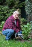 arbeta i trädgården hög kvinna Fotografering för Bildbyråer