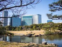 arbeta i trädgården hamarikyuen japan tokyo arkivbild