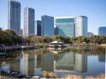 arbeta i trädgården hamarikyuen japan tokyo royaltyfri foto