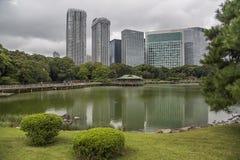 arbeta i trädgården hamarikyuen japan tokyo Royaltyfria Foton