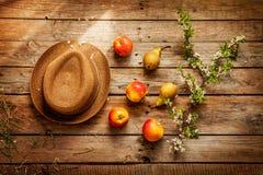 Arbeta i trädgården - hatt, äpplen, päron och blommande trädfilial på trä Fotografering för Bildbyråer