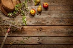 Arbeta i trädgården - hatten, äpplen, päron, krattar, hö och den blommande trädfilialen Royaltyfria Foton