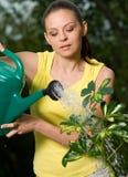 arbeta i trädgården henne kvinnaarbete arkivfoton