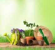 Arbeta i trädgården hjälpmedel och blommor på träbakgrund Arkivbild
