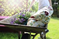 Arbeta i trädgården, hobby och passion Arkivbilder