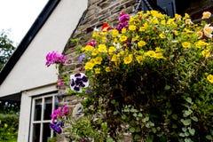 Arbeta i trädgården i den lilla byn av Pott Shrigley, Cheshire, England Arkivfoton