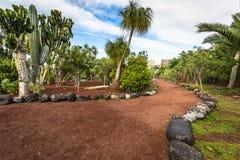 Arbeta i trädgården i Puero de la Cruz, Tenerife, kanariefågelöar, Spanien arkivfoton